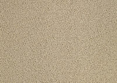 carpet_oxygen_610_beige