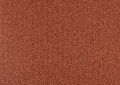 72_dpi_40210014_Sample_carpet_LES BEST_565_RED
