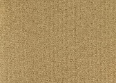 72_dpi_40210374_Sample_carpet_LES BEST_680_BEIGE