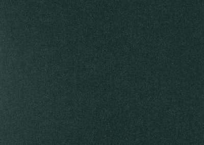 72_dpi_40210484_Sample_carpet_LES BEST_290_GREEN