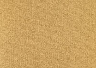 72_dpi_40212214_Sample_carpet_LES BEST_634_BEIGE