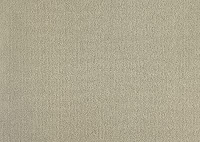 72_dpi_40212254_Sample_carpet_LES BEST_730_BROWN