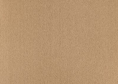 72_dpi_40610115_Sample_carpet_LES BEST 5M_660_BEIGE