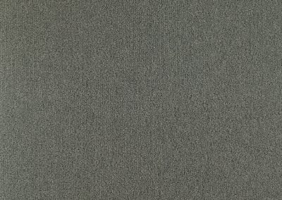 72_dpi_40610145_Sample_carpet_LES BEST 5M_980_GREY